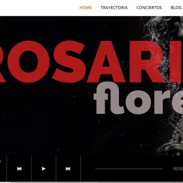 Diseño web para artistas, cantantes y grupos musicales
